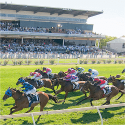 tabtouch-perth-cup-day