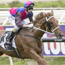 vega-magic-winterbottom-stakes-race