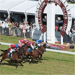 Wellington Cup Carnival Under Way