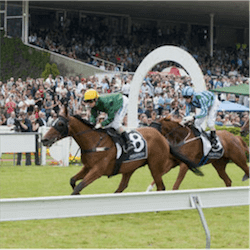 Wellington Cup Day Favourites Upset